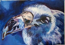 "Oil painting of a vulture head ""Blue Vulture"""